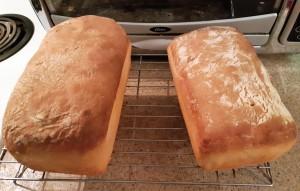pains de ménage sortis du four, vues du dessus
